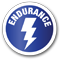 endurance-shadow-copy